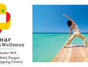 myanmar medihealth and wellness 2014