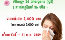 Allergy36 X-stand